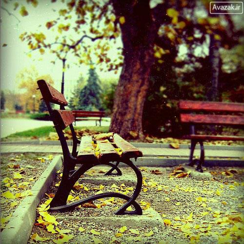 http://www.avazak.ir/gallery/albums/userpics/10001/Avazak_ir-Autumn10.jpg